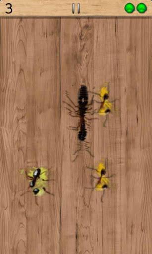 愤怒的昆虫