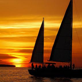 Key West cruise by Gene Myers - Landscapes Sunsets & Sunrises ( florida, colors, sunset, sails, gulf of mexico, key west, sailboat, sun, island, gene myers,  )