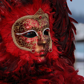 Venice Mask by Dominic Jacob - News & Events World Events ( venezia, italia, carnavale, carnival, carnaval, venice, mask, venise, italy, masque,  )