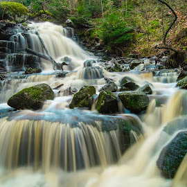 waterfall forest by Christopher Loughrane - Landscapes Waterscapes ( waterscape, waterfall, forest, rocks, river )