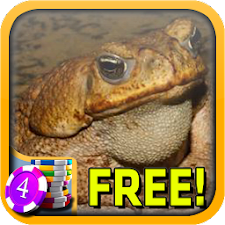3D Toad Slots - Free