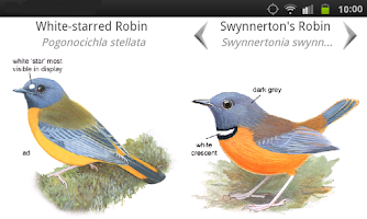 Screenshot of Roberts Multimedia Birds of SA