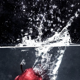 APPLE  by Vijay Anandan - Food & Drink Fruits & Vegetables ( red apple, under water, apple in water, apple, bubbles )