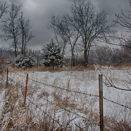 Winter at Days' End Farm by Linda Shannon-Morgan - Landscapes Prairies, Meadows & Fields ( farm, winter, nature, scenes, outdoors, snow, scenic, nikon, mid-missouri )