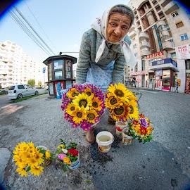 Flower Seller, Eastern Europe by Matthew Haines - People Street & Candids