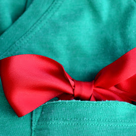 by Alexandra Tudor - Artistic Objects Clothing & Accessories ( red, green, ribbon )