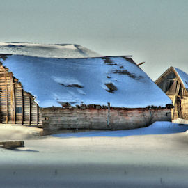 It's So Hard To Say Goodbye. by Michael Priest - Novices Only Landscapes ( farm, wisconsin, winter, barn, snow )