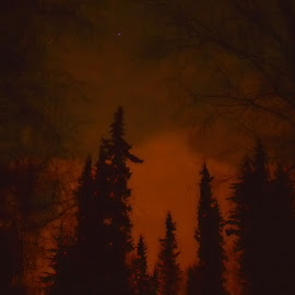 Red Of Night by Rebecca Weatherford - Landscapes Cloud Formations ( clouds, sky, star, trees, night, landscape, nikon )