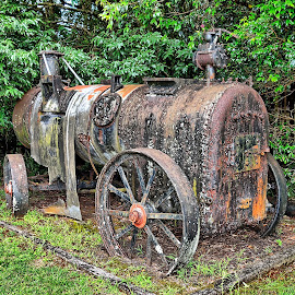 old train engine by Feona Green-Puttock - Transportation Trains ( old, curio, ancient, vintage, treasure, train, relic, steam,  )
