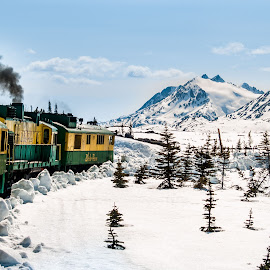 Klondike Railway by Sheldon Anderson - Transportation Trains ( 2009, mountains, blue sky, canada, snow, train, day, klondike railway, land, device, transportation )