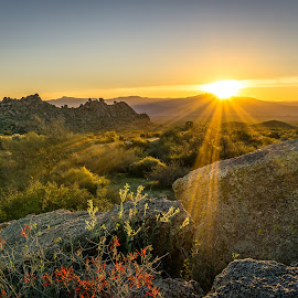 Sunrise Over Four Peaks  by Fred Visser - Novices Only Landscapes ( scottsdale, desert )