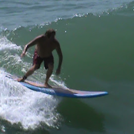 Riding the waves by Peggy Cole - Sports & Fitness Surfing ( water, surfing, waves, long board, hurricane )