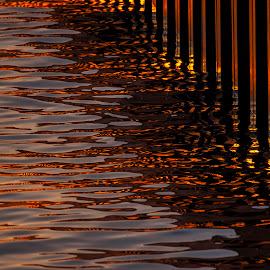 Bronze Ripples by Bill Kuhn - Nature Up Close Water ( bronze, water, reflection, sunset, wave, ripple )