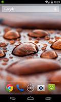 Screenshot of Water Drops Wallpaper