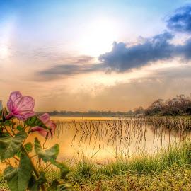 telaga ngipik by Rizal Debby - Landscapes Travel ( sunset, sunrise )