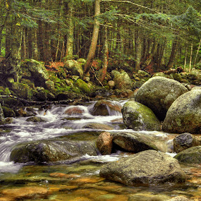 Sabaday Falls 014 by Jeff Stallard - Landscapes Waterscapes ( water, stream, national forrest, sabaday falls, white mountains, new hampshire )