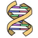 DNA Easy icon