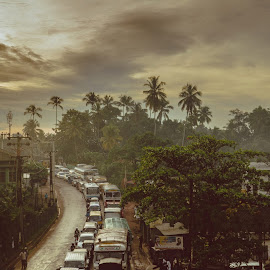 My First snap of Sri Lanka! by Bassel Hamieh - Landscapes Travel