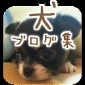 かわいい犬ブログ集