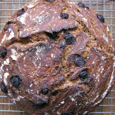Barley, Beer and Dark Chocolate Artisan Bread