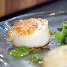 Pan-Seared Diver's Scallops with Roasted Red Pepper Paint and Basil Oil