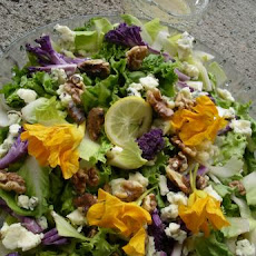 Chicory-Endive Roquefort  and Walnut Salad