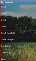 Screenshot of Crow Calls