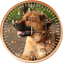 Dog 2 Sunshine Analog Clock icon