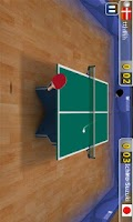 Screenshot of Table Tennis 3D