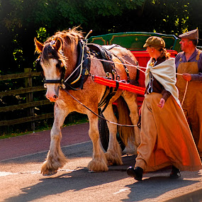 by Robert Wake - News & Events Entertainment ( woman, event, horse, people, man,  )