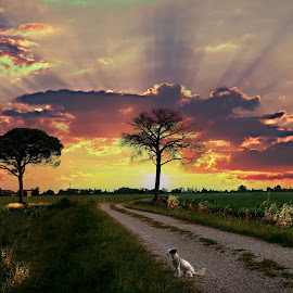 by Sanjas Foto - Landscapes Sunsets & Sunrises