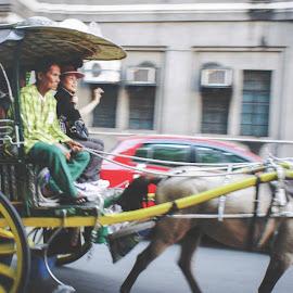 Isakay mo ko dito by Allen Villaflor - City,  Street & Park  Street Scenes ( alingjoy, park, horse, street, chariot, intramuros, kalesa, manila, philippines, city, intra )