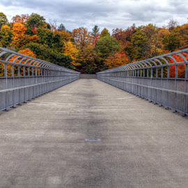 vanishing point by JERry RYan - Buildings & Architecture Bridges & Suspended Structures
