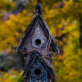 Bird House by Nancy Merolle - Artistic Objects Other Objects