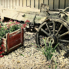 Wagon Wishes by Sue Neitzel - Artistic Objects Other Objects ( landscpaes, wood, flowers, rustic, wagons )