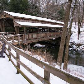 Lanterman Falls Covered Bridge by Gannon McGhee - Buildings & Architecture Bridges & Suspended Structures ( ohio, youngstown, lanterman, falls, bridge, covered )