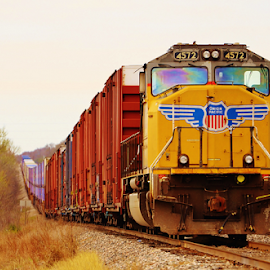 UP 4572 3363 by Jim Suter - Transportation Trains (  )