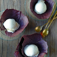 Chocolate Cabbage Leaves with Vanilla Ice Cream