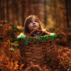 son by AMIR BAJRIĆ - Babies & Children Children Candids ( child, love, cover, tree, wood, art, son, beauty, childhood, boy, hair, people )