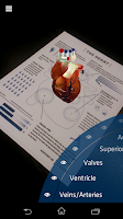 Screenshot of Anatomy 4D
