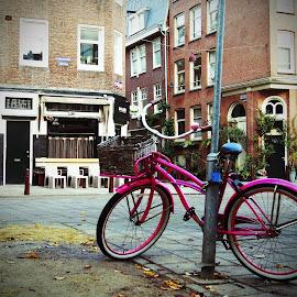 Pretty in Pink by Vijay Balasundaram - Transportation Bicycles