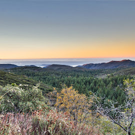 Mount Laguna Sunrise by Greg Head - Novices Only Landscapes ( mount laguna, clouds, mountains, trees, sunrise )
