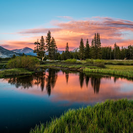 by Mark Cote - Landscapes Waterscapes ( tuolumne river, tuolumne meadows, sunset, yosemite national park, reflections,  )