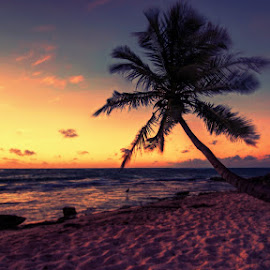 Beaches are beautiful  by Pratik Dasgupta - Landscapes Beaches