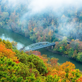 Small Bridge in the large world by Michelle Nolan - Landscapes Forests ( west virgina, fall, bridge )
