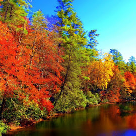 by ~Gwendolyn~ Model - Landscapes Forests ( fall, color, colorful, nature,  )
