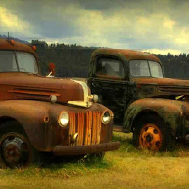 Oh the Stories They Could Tell! by Joy Ortiz - Transportation Automobiles ( old, truck, vintage, montana, automobile, vehicle, rusty, ford, chevy, noordhoek, south africa, noordhoekchallenge )
