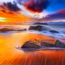 Golden beach by Dany Fachry - Landscapes Beaches