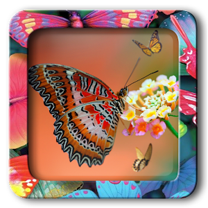 Butterfly Frames Editor Pro - Android Apps on Google Play