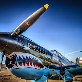 Flying Tiger by Ron Meyers - Transportation Airplanes
